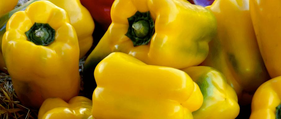 Bucatini ai peperoni gialli – Ricette Al Microonde