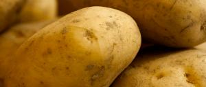 Crema-di-patate-e-porri-al-basilico-Ricette-al-Microonde-300x128 Crema di patate e porri al basilico